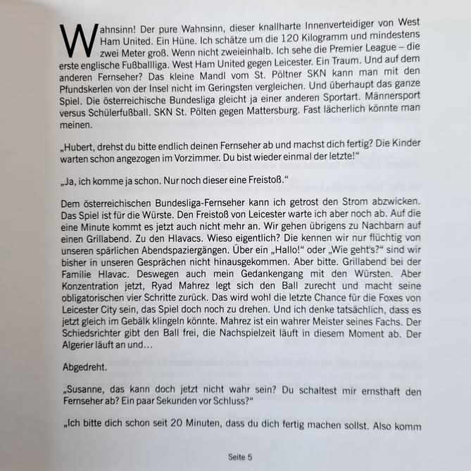 The Disaster - Männer allein zu Haus - Seite 5